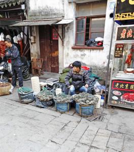shutterstock_120038485 suzhou crab seller shantangjie jiangsu