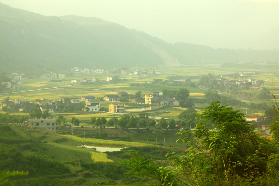 That's Why Good Chinese Tea Is Not In Your Supermarket ...  |China Farmland